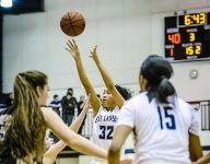 Lansing area high school basketball standings