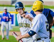 Mid-Michigan baseball preview