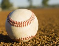 Ala. baseball coach suspended pending investigation of argument with umpire