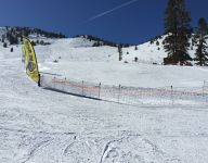 Matteson, Taylor top field in slalom at state skiing