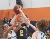 Rozzi shines as 'underdog' Highland girls roll to a Section 9 championship