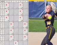 Illinois softball pitcher throws 'perfect' perfect game after no-hitter