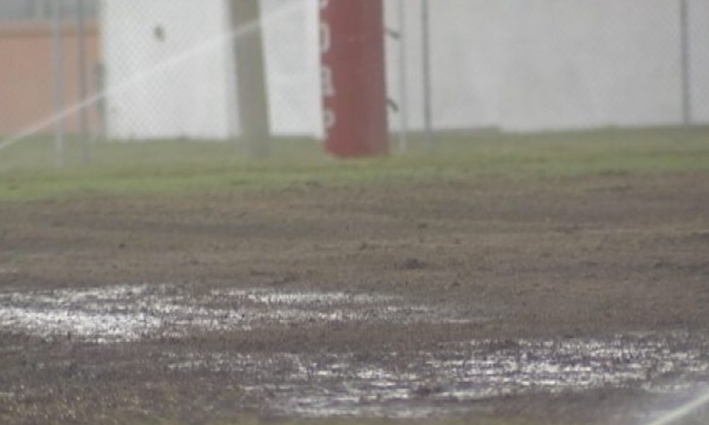The Sattelite football field, which has been overrun by mole crickets (Photo: Twitter screen shot)