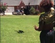 VIDEO: Freshman WR pulls down wild one-handed, full flip catch in backyard