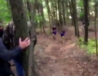 Watch a deer nearly collide with Pa. cross country runners