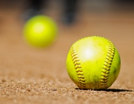 Police: Mom kicked out of youth softball game threatened to punch cop
