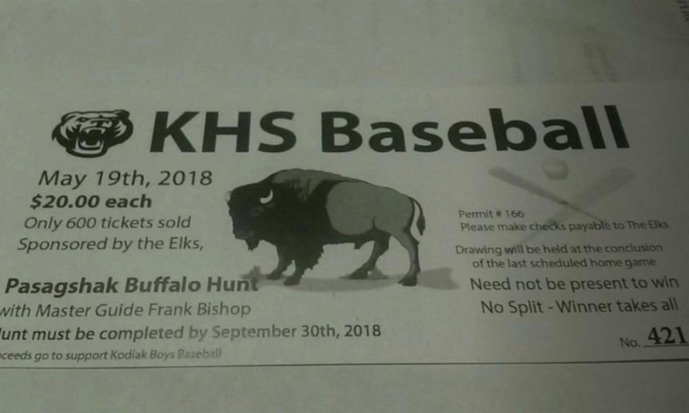 The Kodiak baseball fundraiser (Photo: @tdanielle76/Instagram)