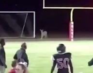VIDEO: Look at that kick returner go ... oh wait, that's a deer!