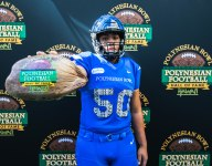 Polynesian Bowl: Everything you need to know
